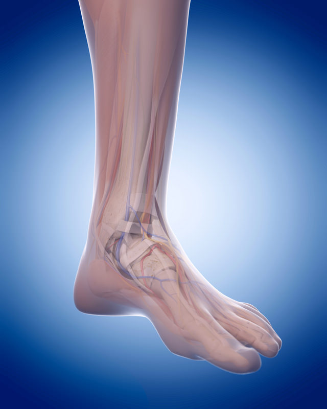 Foot-and-Ankle-Surgeon-Los-Angeles-Foot-and-Ankle-Surgeon-1